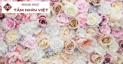 Tổng hợp tên của các loài hoa trong tiếng Nhật
